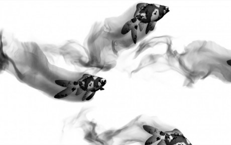 Turbulence FD Tutorial Preview: Ink/Smoke Trail