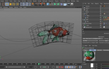 Turbulence FD Ink/Smoke Trail Tutorial Part 1: Rigging and Animating a Fish